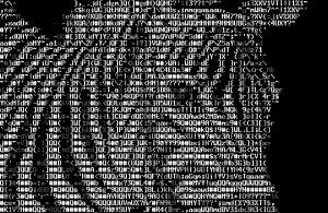 bb-ascii-art-screenshot-zebra