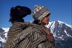 Caravans-of-the-Himalaya-Photographer-Eric-Valli-8